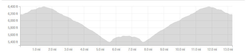 half-marathon-elevation